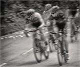 The Race (edit 1)