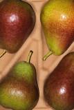 18 May: Pears