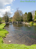 Ashford-in-the-Water