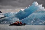 Jökulsarlárlon - encounter with an iceberg