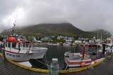Siglufjördur: harbor view