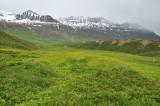 Green pastures near Kot