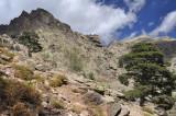 Landscape near Verghio pass