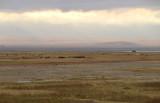 40720_108_Ngorongoro-Crater-floor.JPG