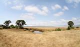 40720_118_Ngorongoro-Crater-floor.JPG