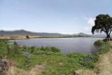 40720_130_Ngorongoro-Crater-floor.JPG