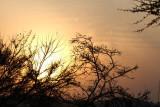 40722_110_Sunrise.JPG