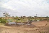 40722_122_Serengeti.JPG