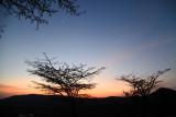 40723_110_Serengeti-Sunrise.JPG