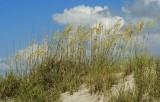 Sandy Point at Kiawah Island
