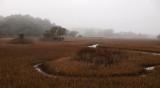 marsh pano foggy-1a.jpg