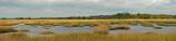 ACE marsh pano 1-a-small.jpg
