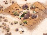 Kalahari Cattle-Ranch
