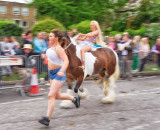 Equine Exercise