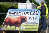 Win a Bull