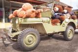 Teddybear Paparazzi