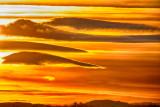 Lenticular Clouds (Altocumulus lenticularis)
