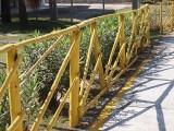 Fences 0616