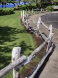 Fence C015615