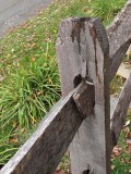Fence A014697