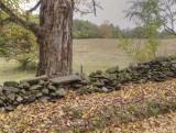 Fence A014695
