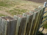 Fence 1000058