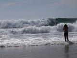 Beach 3111949