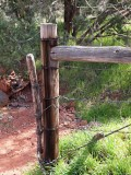 Fences 42493