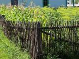 Fence 8119683