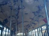 Abandoned bus 9275867