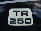 Triumph4