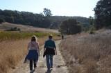 Going Around the Marsh