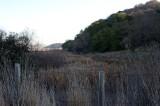 1/15/14: Beginning of Trail