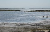Tidal Water Now Flows Into Marsh