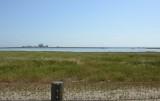 Restored Salt Marshes