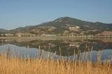 Mt. Burdell Reflected