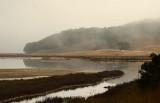 Foggy Creek