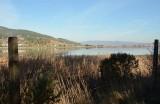 Rush Creek Marsh