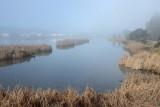 Lagoon By Bel Marin Keys