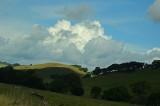 White Puffs, Lit Hills