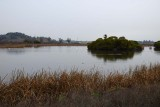 12/30/15: 1st Pond
