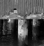 Corrugated Rust & Piers