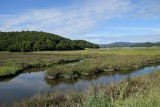 Marsh Levee and Hills View
