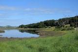 Marsh Overview
