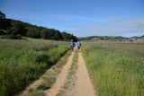 Through The Long Straight Meadow