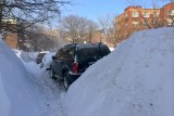 Snow mounds higher than cars
