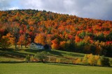 Full color in Marlboro, Vermont