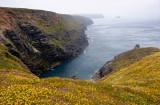 cliffs west of Porthtowan 2013