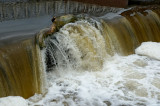 a log caught on the edge of the weir