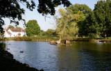 Hanley Swan -postcard view